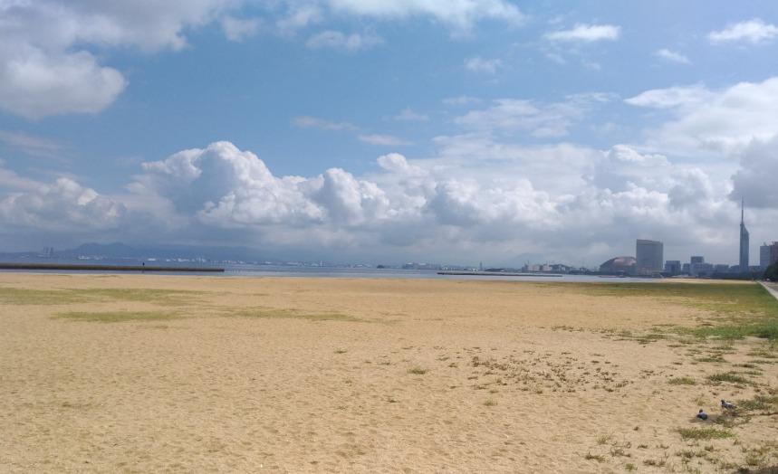 姪浜漁港の釣り場(トイレ・駐車場料金・売店・手洗い場)釣れる魚