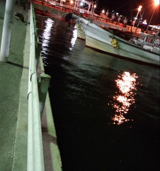 福岡アジングでサビキは釣れずアジングで釣れる10月秋の姪浜漁港!