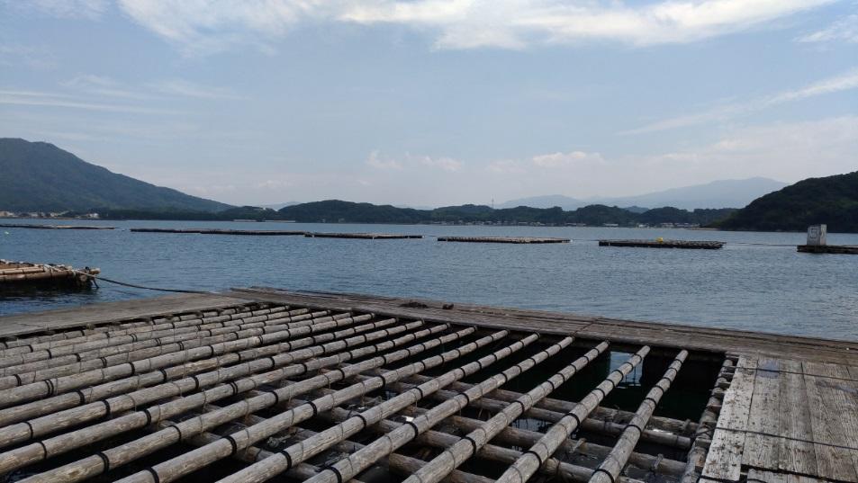 福岡県糸島市岐志のイカダ(筏)釣り!トイレありで女性でも手軽に楽しめます。